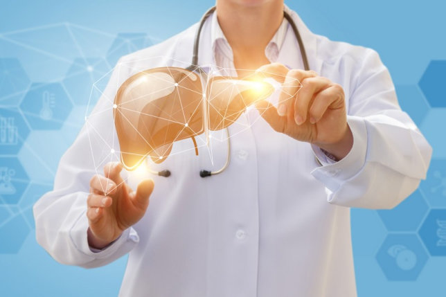 How Does Our Liver Do Wonders in Our Body?